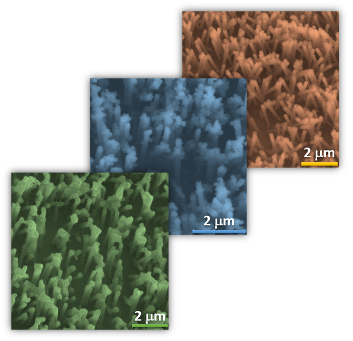 Nickel nanowires coated with a copper layer, depending on the coating technique, the wires form different shapes (packages, nano-cactuses…) (c)