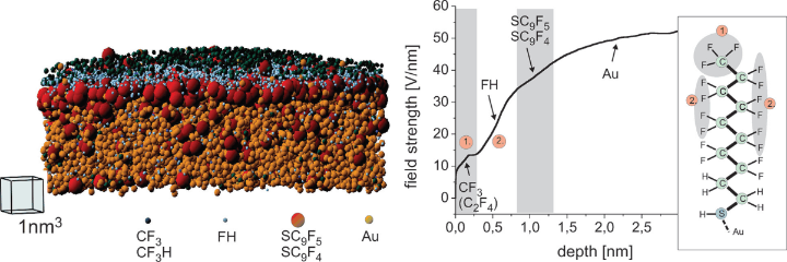 Left: Reconstruction of a self-assembled monolayer of perfluoro-decanethiol on top of a Au tip. Right: Field strength required for the evaporation of the fragments from a single chain.